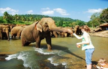 Speceal Offer-Kandy Colombo 2Nights/3Days