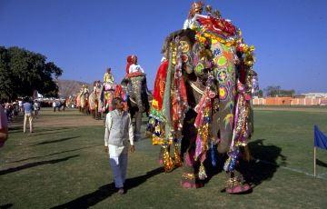 Rajputana Retreat