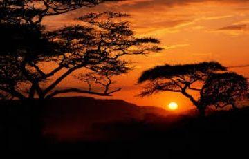 Wilderness Experience -Camping Safari