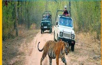 Uttarakhand Package 7 Night / 8 Days