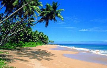 Sri Lanka Holiday - 6 Days / 5 Nights