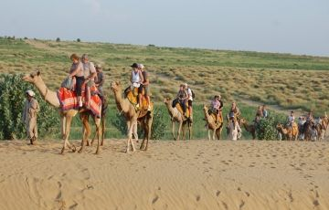 Special Desert Odyssey