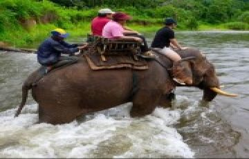 Siam Explorer Thailand 5 Nights / 6 Days
