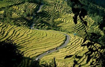 Best Of Sikkim