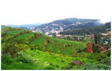 Ooty Budget Tour