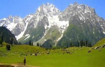 Kashmir Tour Package 8 Days & 7 Nights