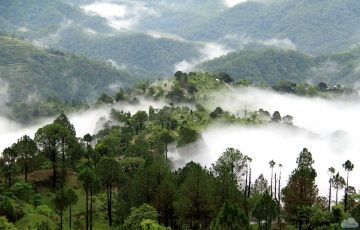 Delhi to Dharamsala Tour Package