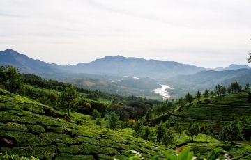 Kerala Holiday Package 2 Nights and 3 Days