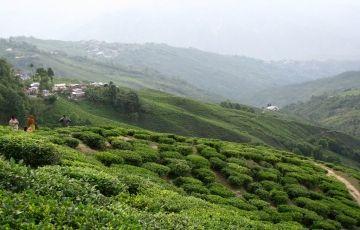 The Himalayan Grandeur Tour Package