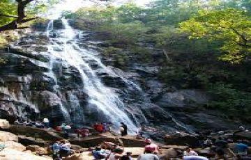 Gorgeous Madhya Pradesh Tour