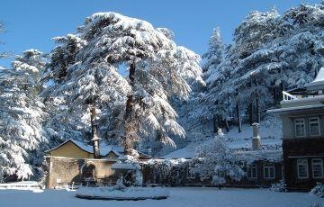 Romantic Shimla With Golden Triangle
