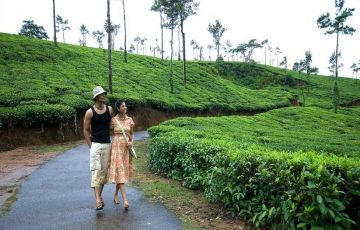 Coorg Family Tour For 4 Days / 3 Nights