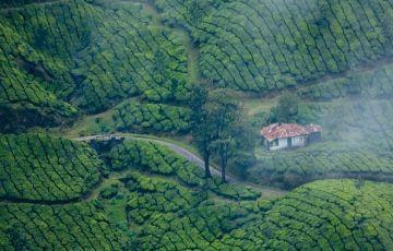 Kerala Tour (6 Nights / 7 Days)