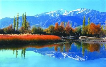 Beautiful Of Srinagar Tour Package