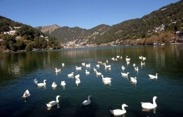 Short Escape – Nainital