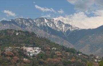 Vibrant Himachal