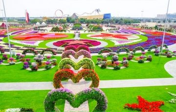 Chilling Experience In Dubai
