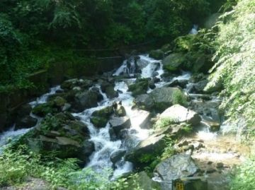 Nainital With Uttrakhand (8 nights and 9 days)