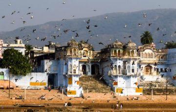 Pushkar and Tajmahal Tour