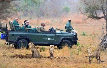 South African Safari Explorer Tour