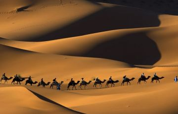Special Rajasthan Tour