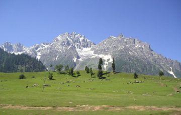 Trip to Jammu Tour