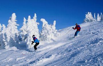 Trip To Resort Shimla