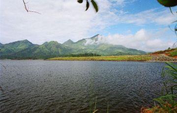 Wayanad Village stay and Farm Walk