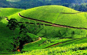 Home Stay In Kerala