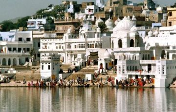 Central India Temple and Tiger Tour