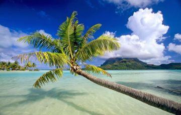 Charming Goa Beach Tour
