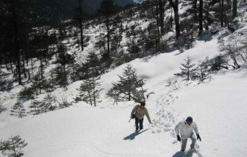 Cultural North East India Tour