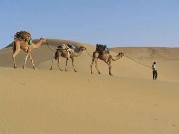 Desert Triangle