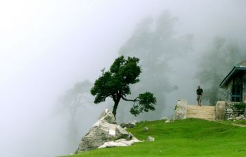 Foothills of Himalayas Tour