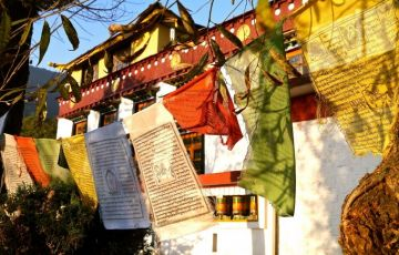 Himachal Hues ( Winter Special )