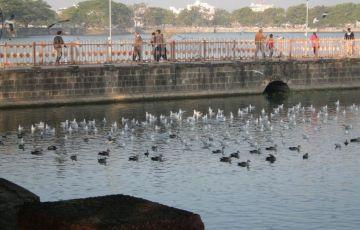 Ahmedabad Thrill Tour