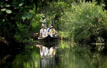Kerala Beaches and Backwaters Tour