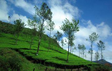 Kerala Heritage & Hills 3 Nights 4 Days Tour