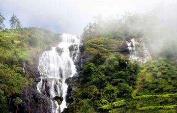 Kerala WIldlife Thrills