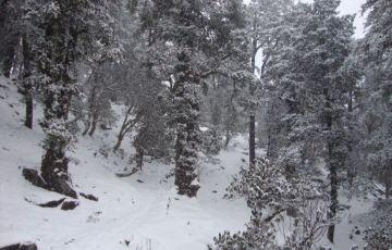 Lord Curzon Trail Tour