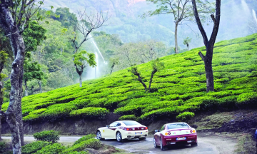 Bangalore Mysore Ooty Tour Package