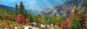 RISHIKESH ADVENTURE TOUR PACKAGE 2 NIGHTS AND 3 DAYS