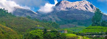 Kerala Honeymoon Package By Travel Talk