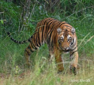 Agra  jaipur  Trip 7N/8D