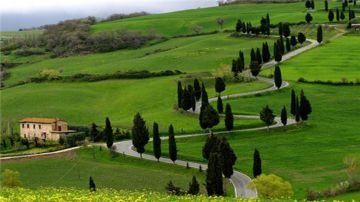 Delightful Ooty Holiday Package