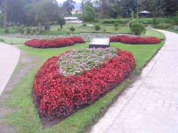 COLOMBO CITY WONDROUS