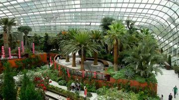 ASTOUNDING IN SINGAPORE