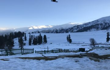 Kashmir winter Tour