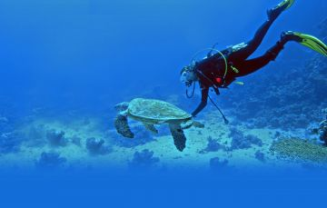BEST PLACES TO VISIT IN LAKSHADWEEP