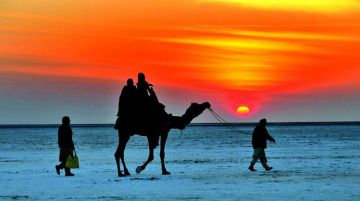 INCREDIBLE PLACES TO VISIT IN INDIA BEFORE YOU DIE RANN OF K